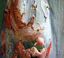 Flesh Bark by Haydee  Yordan