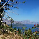 Crater Lake, Oregon by Marita Sutherlin