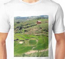 an amazing Madagascar landscape Unisex T-Shirt