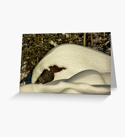 Stone Fossil Greeting Card