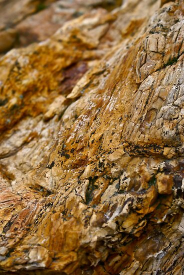 Texture in Rock 1 by Themossgirl