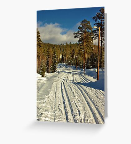 Winter Day in Sweden Greeting Card