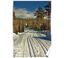 Winter Day in Sweden Poster