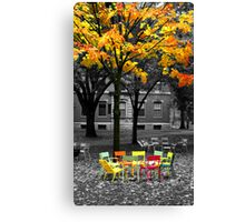 Chairs at Harvard , Boston, MA, USA Canvas Print