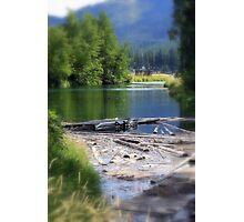 Lake swamp Photographic Print