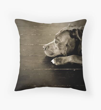 Penny for your thoughts? Throw Pillow