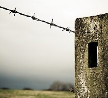 Fence against the storm by Squawk