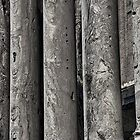 Columns by andreisky