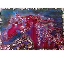 Water Horse Photographic Print