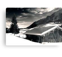 Winter, Austria Metal Print