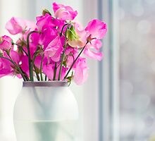 Sweet Peas 2 by StuartStevenson