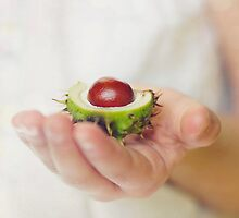 Conkers by StuartStevenson