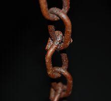 Rusty Chains by Sarah Iannucci