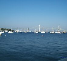 Boats, Bridge and a Bay by Cathy O. Lewis