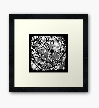 The Chocolate Vine Through The Viewfinder (TTV) Framed Print