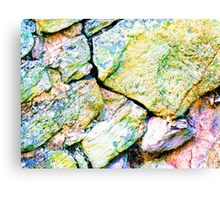 Read The Barriers. Canvas Print