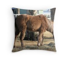 Warm for the Winter Throw Pillow