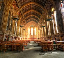Brilliance and Academia by van Kampen Photography
