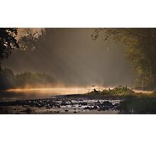Great Blue Heron, River Mist Photographic Print