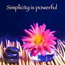Simplicity Is Powerful Zen Rocks Dahlias by daphsam