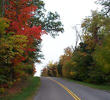 Country Roads- Left on Red by Timothy Eric Hites