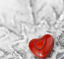 Love of the snowflake by misstk