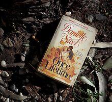 Abandoned Romance by Tama Blough