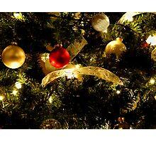 Holiday Series VII Photographic Print