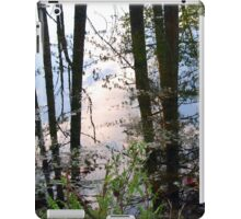 Waterlines iPad Case/Skin