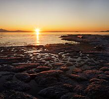 Boundary Bay Sunrise by Ryan Watts