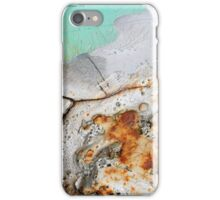 Winter's Demise iPhone Case/Skin