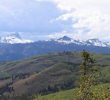 Uncompahgre Peak by Amy Francen