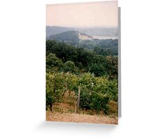 Vineyard by the Hudson  Greeting Card