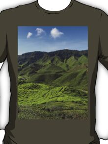 a colourful Indonesia
