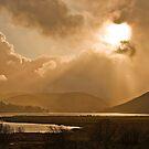 Light Rain by dsargent