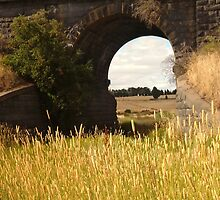 Railway Bridge,Geelong Outskirts by Joe Mortelliti