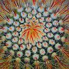 Kool Kactus  by wiscbackroadz