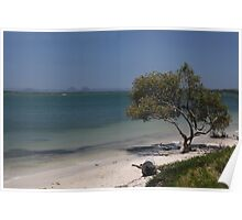 Glasshouse Mountains from Bribie Island Poster