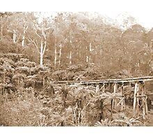 Mt Dandenong, VIC, Australia Photographic Print