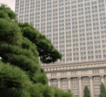 Gardens of the The Tokyo Imperial Palace Sticker