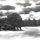 Landscape B&W Park by shakey123