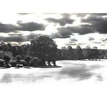 Landscape B&W Park Photographic Print