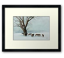 Horses in the Snow Framed Print