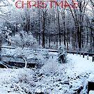 Merry Christmas III by Lisa Brower