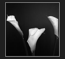 Cala Lilies (Square composition) by MoGeoPhoto