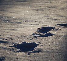Lonely Walk by Rowan  Lewgalon