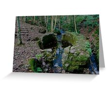 Lady Kennedys Bath in Dunottar Woods Greeting Card