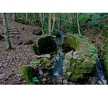 Lady Kennedys Bath in Dunottar Woods Photographic Print