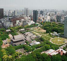 Aerial View of Zojo-Ji Temple  by jojobob