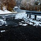 Icy  Roads & Freezing Toes! by Lisa Brower